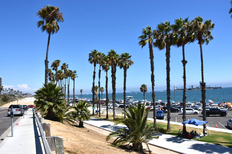 ロサンゼルスから車で30分! ロングビーチで楽しめること