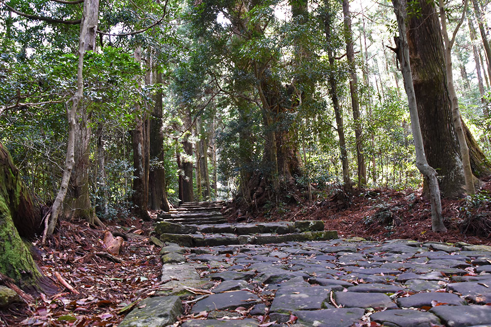 熊野古道〜大門坂から歩く熊野那智大社〜