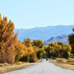 カリフォルニアの紅葉スポット イースタン・シエラ