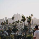 ロサンゼルスの下品なヤシの木
